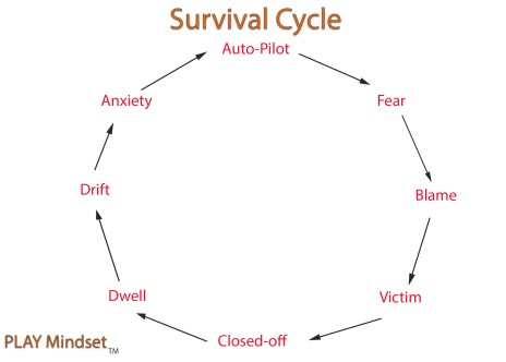 Survival_cycle